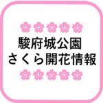 🌸駿府城公園 さくら開花情報🌸(3月21日更新)