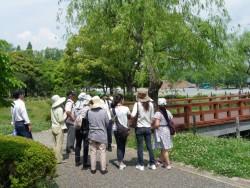 160612あるある探検隊~初夏 写真3