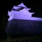 てんかん啓発キャンペーン ライトアップのお知らせ