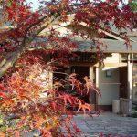 12/2(土) 【1日限定】紅葉山庭園茶室にて紅葉ランチ会 開催