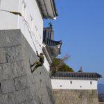 12/15(日) ~自衛隊第34普通科連隊 巽櫓を清掃~「駿府城公園クリーン作戦」を行います。