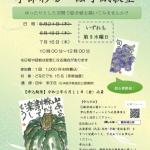 【受付終了】紅葉山庭園茶室 季節彩る 絵手紙教室 7/16(木) (5/28更新)