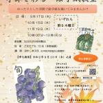 【受付終了】紅葉山庭園茶室「季節を彩る絵手紙教室」 全3回 9/17(木)・10/15(木)・11/19(木) (8/7掲載)
