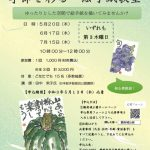 【受付終了】紅葉山庭園茶室「季節を彩る絵手紙教室」全3回 5/20(木)、6/17(木)、7/15(木)