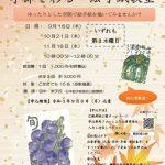 【申込終了】紅葉山庭園茶室「季節を彩る絵手紙教室」全3回 9/16(木)、10/21(木)、11/18(木)